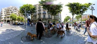 French dogs at Casa Mila