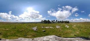 bellingham hills